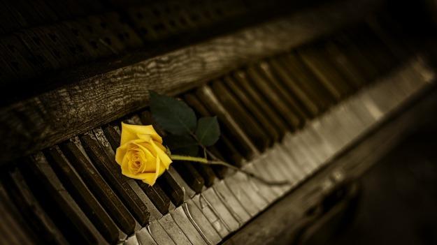 piano-teacher-in-wallsend-nsw-rose