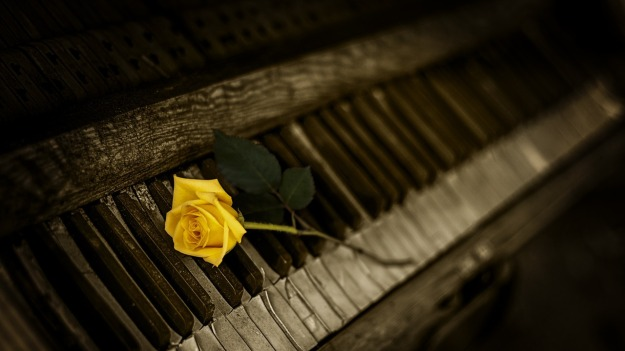 piano-teacher-in-wallsend-nsw-rose